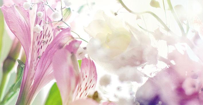 کاغذ دیواری Nature & Flower